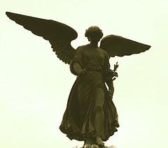Some wandering angels of the rheumatology world